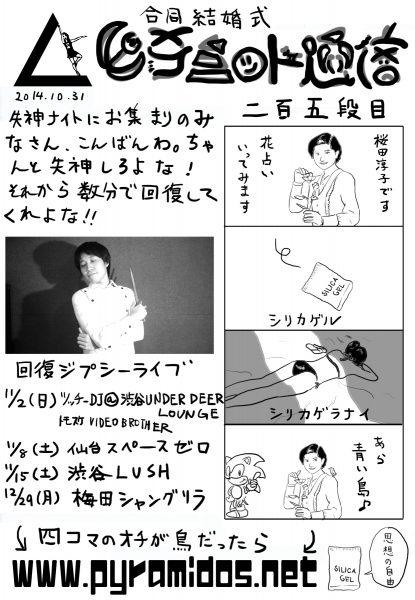 Vol.205のピラ通